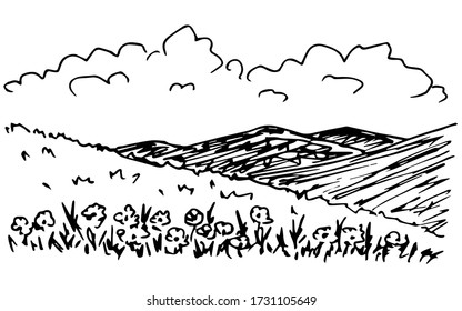 Simple vector ink drawing in engraving style. Summer landscape, flowers in the foreground, the silhouette of mountains on the horizon, clouds, hills, nature, flowering foothills.