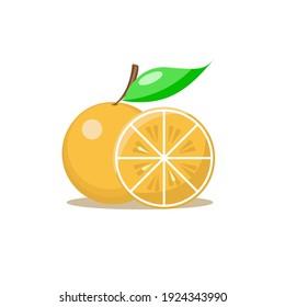 simple vector orange fruit and orange juice