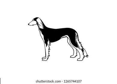 Simple vector of Saluki Dog