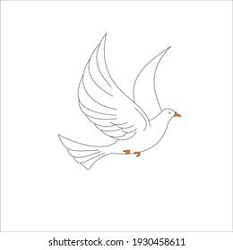 a simple white dove design