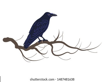 Simplified crow isolated on white background. Black bird sitting on tree branch. Raven with big beak side view vector flat illustration
