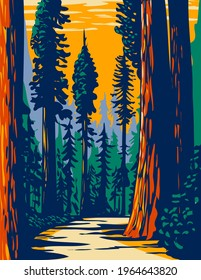 Simpson-Reed Grove of Coast Redwoods Located in Jedediah Smith State Park Part of Redwood National and State Parks in California WPA Poster Art