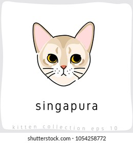 Singapura : Cat Breed Collection : Vector Illustration