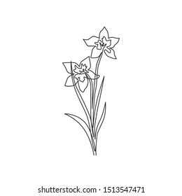 Single continuous line drawing of beauty fresh narcissus for home wall decor art poster print. Printable decorative daffodil flower for card ornament. Modern one line draw design vector illustration