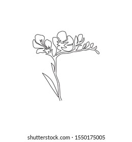 Freesia Drawing Images Stock Photos Vectors Shutterstock