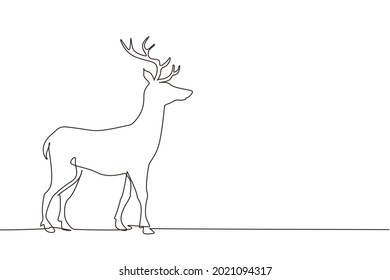 Single continuous line drawing forest wild deer. Standing wild reindeer for national park logo. Elegant mammal animal mascot for nature conservation. One line draw graphic design vector illustration