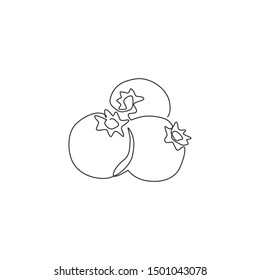 Single continuous line drawing of whole healthy organic blueberries for orchard logo identity. Fresh blue berry fruitage concept for fruit garden icon. Modern one line draw design vector illustration