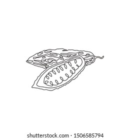 Single continuous line drawing of whole and sliced healthy organic bitter gourd for garden logo identity. Fresh Indonesian pare concept for veggie icon. Modern one line draw design vector illustration