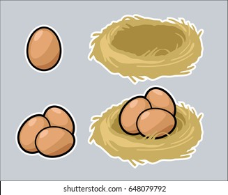 Single egg, three eggs, nest, and eggs in nest