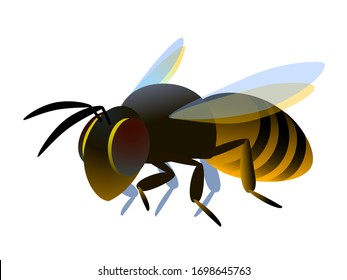 Single flying worker honeybee logo or emblem. symbol of the collective unit. color vector illustration isolated on a white background in cartoon or clip art style