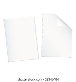 Single piece of white paper torn in half with shadow
