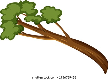 Single rainforest branch isolated on white background illustration