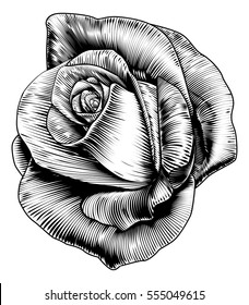 A single rose flower in a vintage retro engraved etching woodcut style