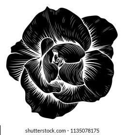 A single rose flower in a vintage woodcut retro engraved etching style