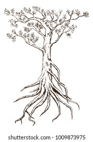 Single Tree Drawing.tree silhouettes on white background. Hand-drawn sketch illustration