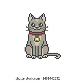 Sitting happy gray Maine Coon cat in a red collar with a golden bell, pixel art icon isolated on white background. Old school 8 bit slot machine/video game graphics. Pet shop/store logotype.