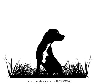 Sitting Leopard Catahoula Dog Silhouette in Grass