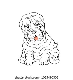 Sitting shar pei, puppy dog, hand drawn illustration.