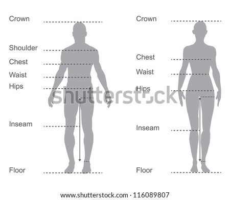 Size Chart Measurement Diagram Male Female Stock Vector Royalty