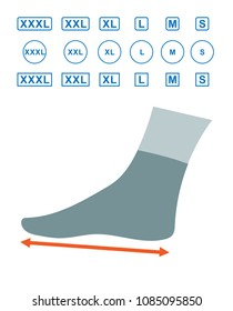 The size of the foot in humans. Foot size profile. Sizes of socks. Shoe sizes. Scheme of foot sizes for shoes and socks on a white background. Can be used for sizes socks, shoes. Vector illustration