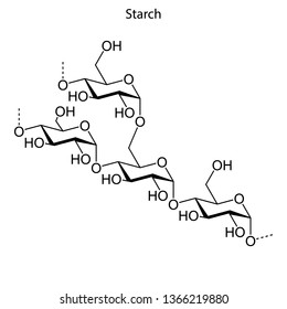 Skeletal formula of starch. chemical molecule.