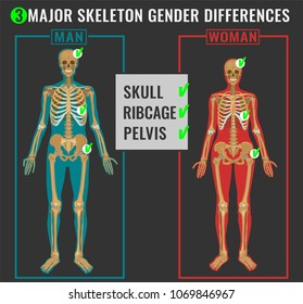 Skeleton differences poster. Male in comparison with female. Major gender nuances. Vector illustration isolated on a dark grey background.