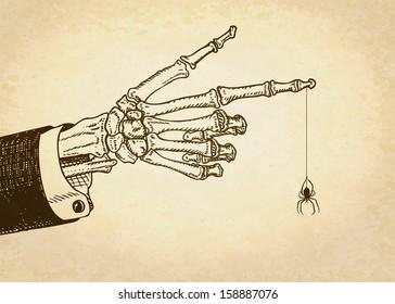Skeleton hand with spider. Vector illustration, eps10.