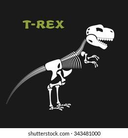 Skeleton tyrannosaurus Rex. Bones and skull of  dinosaur. Dead t-Rex. Ancient animal bones from Jurassic period.