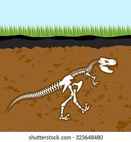 Skeleton of  Tyrannosaurus Rex. Dinosaur bones in Earth. Fossil Ancient fearsome animal. Slice through  soil. archaeological excavations. Prehistoric monster
