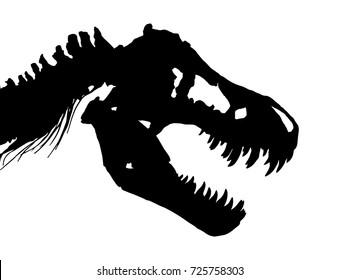 Skeleton of Tyrannosaurus rex ( T-rex ) ( Skull and Neck ) . Vector .