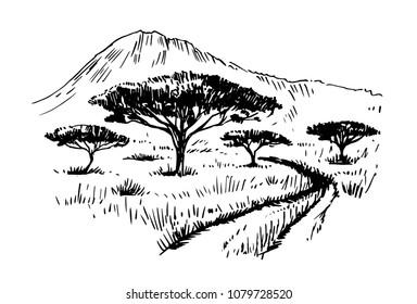 Sketch of the African savanna with plants and trees. Hand drawn illustrtion converted to vector.
