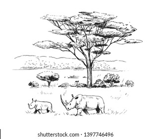 Sketch of the African savanna with trees and rhinoceros. Hand drawn illustration converted to vector.