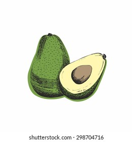 Sketch of avocado. Original vector illustration.