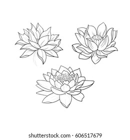 1000 Lotus Tattoo Stock Images Photos Vectors Shutterstock