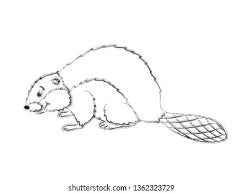Sketch of a beaver on a white background.