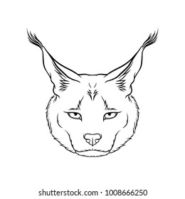 Sketch of caracals head, portrait of steppe lynx black and white hand drawn vector Illustration