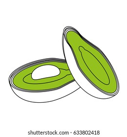 sketch color silhouette set avocados fruit food