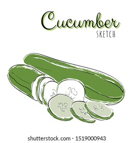 Sketch with cucumber. Vector paint hand drawn composition with cucumbers in cartoon style. Isolated on white background.