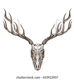 Sketch of deer skull. Outline vector illustration for tattoo, printing on t-shirts, posters and other items.
