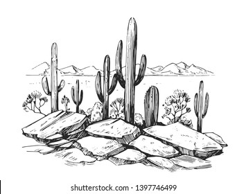 Sketch of the desert of America with cacti. Prairie landscape. Hand drawn vector illustration
