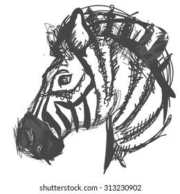 Sketch, doodle, hand drawn illustration of zebra