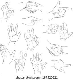 sketch drawing hands