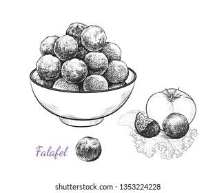 Sketch of falafel. Falafel balls in a bowl, tomato and separate  balls on a leaf of lettuce. Vector illustration of Middle Eastern cuisine.