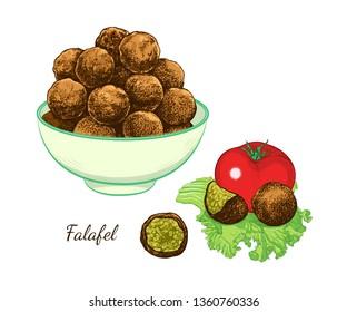 Sketch of falafel. Falafel balls in a bowl, tomato and separate  balls on a leaf of lettuce. Vector color illustration of Middle Eastern cuisine.