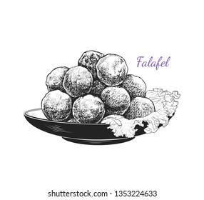 Sketch of falafel. Falafel with a leaf of lettuce on a plate. Vector illustration of Middle Eastern cuisine.