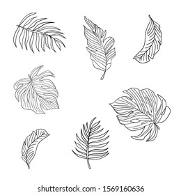 Sketch Forest Leafs - Vector Graphic