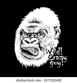 Sketch of a Gorilla. Wild! Crazy guy! - lettering quote. Hand drawn style print. Vector black and white illustration.