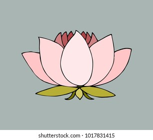 sketch hand-drawn isolated national symbol of india water lily l