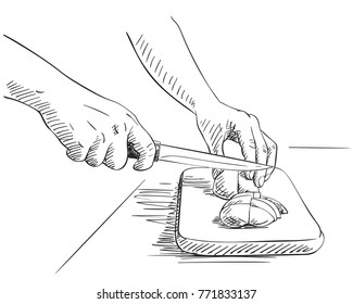 Sketch of hands cutting vegetables on cutting board, Hand drawn vector illustration