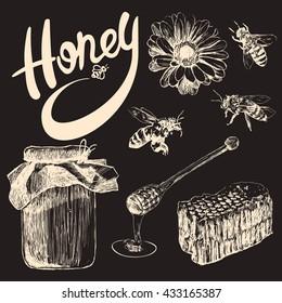 Sketch honey set. Hand drawn vintage illustrations.